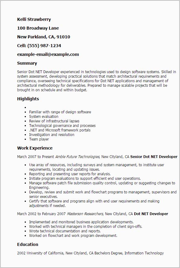 senior dot net developer