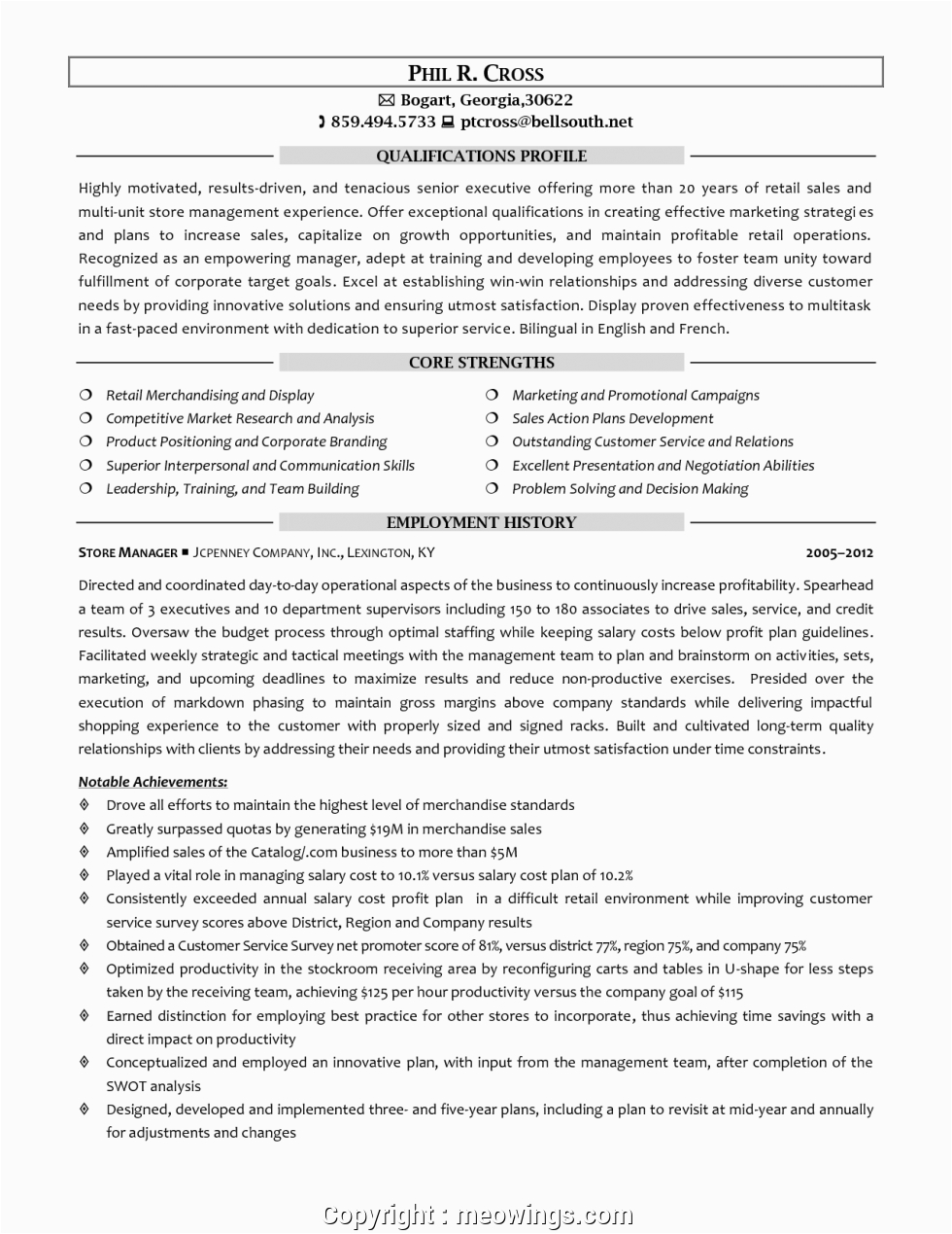 unique resume format for area sales manager in fmcg