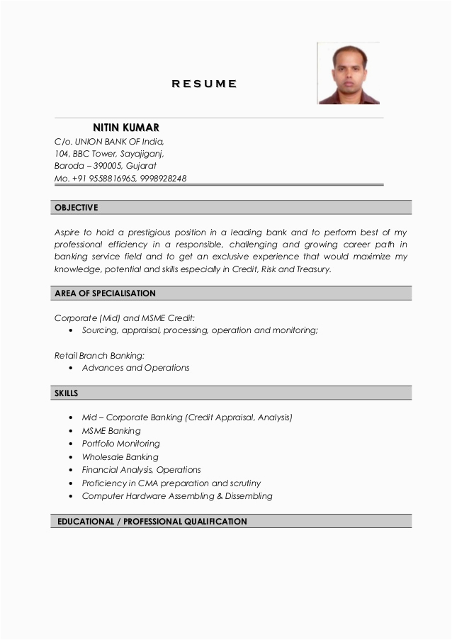 Sample Resume for Credit Manager In India Nitin Kumar Resume Credit Analyst