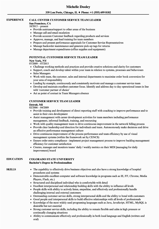Sample Resume for Customer Service Team Leader Customer Service Team Leader Resume Samples