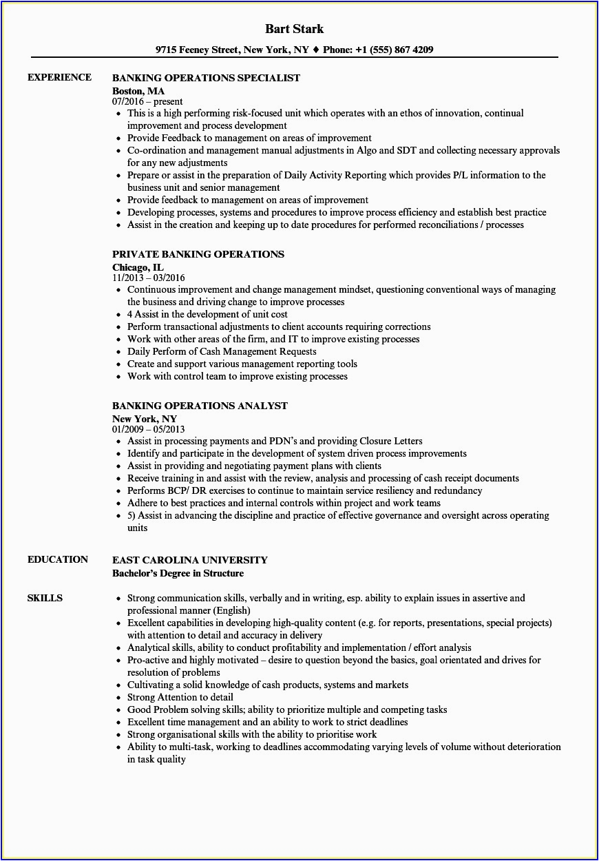 Sample Resume for Experienced Banking Professional Resume Samples for Experienced Banking Professionals