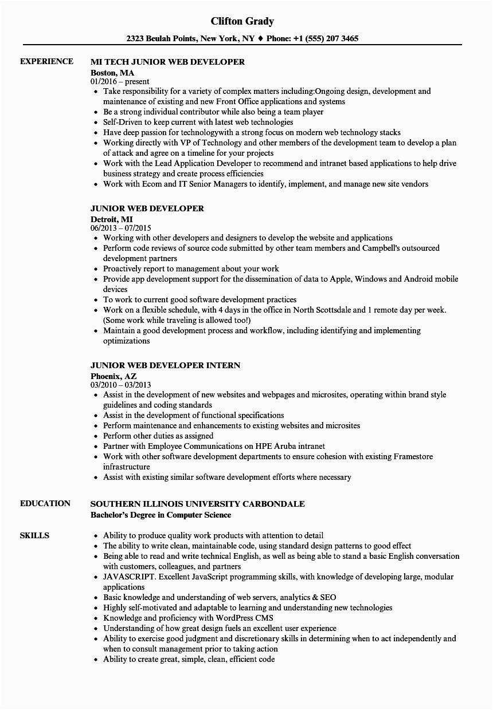 Sample Resume for Junior Web Developer Junior Web Developer Resume Samples