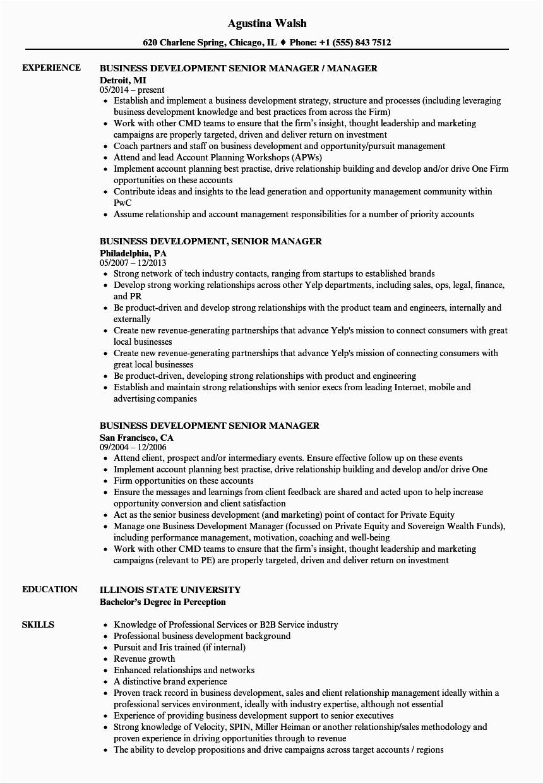 business development senior manager resume sample