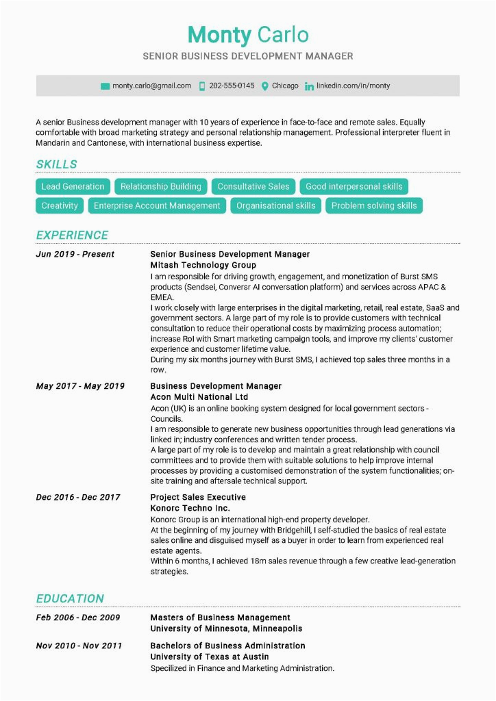 Sample Resume for Senior Business Development Manager Senior Business Development Manager Resume Example In Year