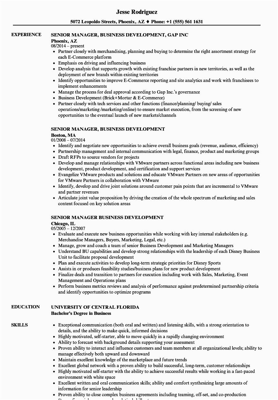 senior manager business development resume sample