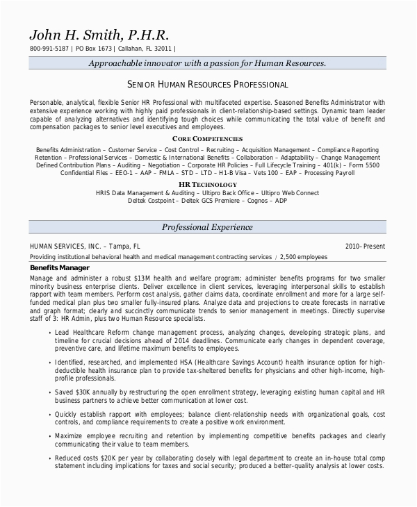 Sample Resume Summary Statements About Experience Free 9 Sample Resume Summary Statement Templates In Ms