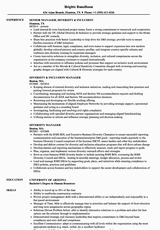 diversity manager resume sample