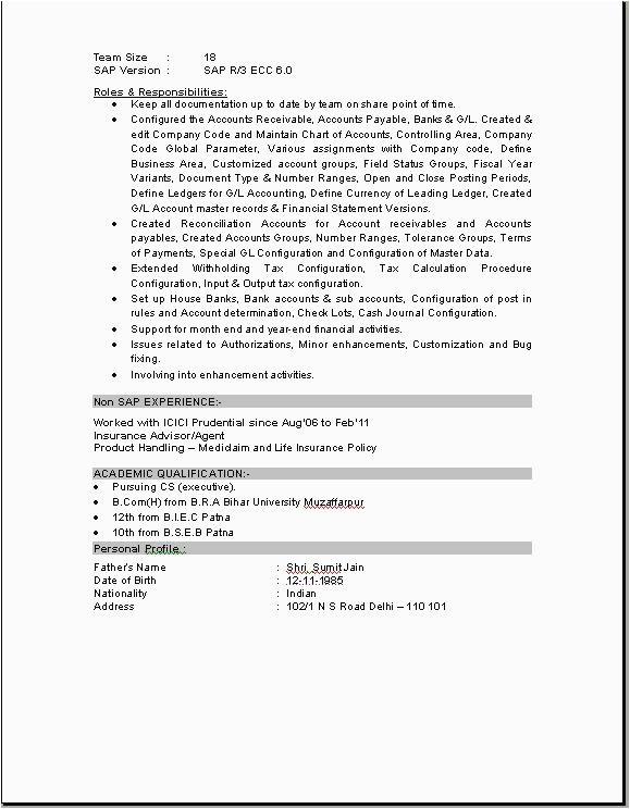 sap pp end user resume sample