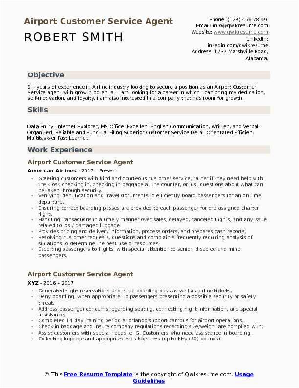 airport customer service agent