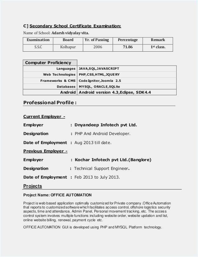 software developer sample resume for