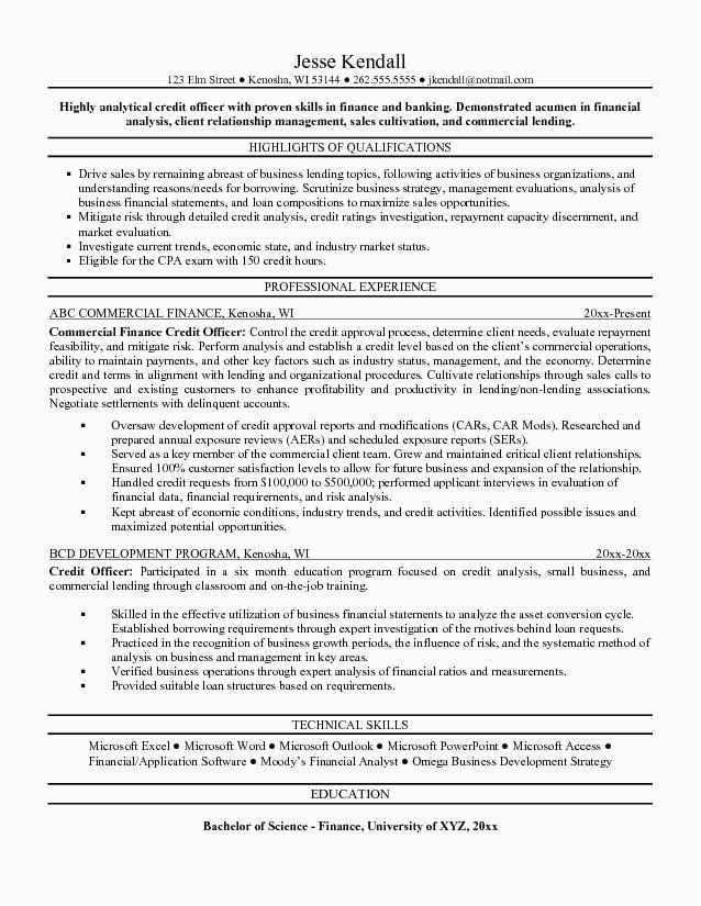 credit manager resume 2