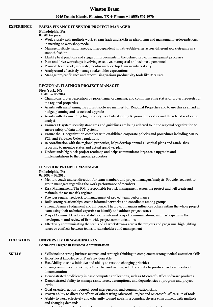 Senior It Project Manager Resume Sample It Senior Project Manager Resume Samples