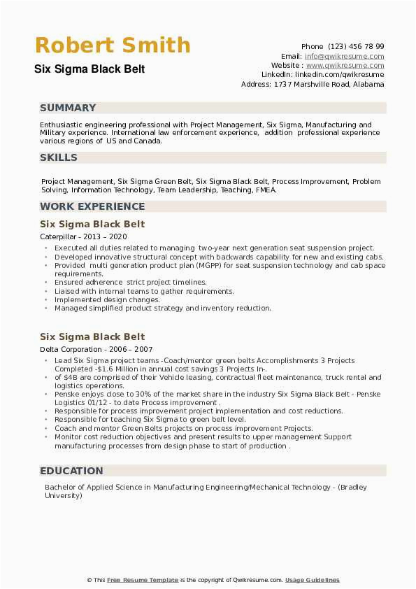 Six Sigma Black Belt Resume Sample Six Sigma Black Belt Resume Samples
